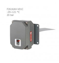 فلوسوئیچ آب پن جانسون کنترل مدل F261KAH-V01C
