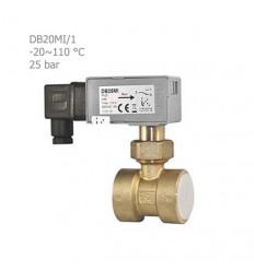فلوسوئیچ مایعات آی تی (IT) مدل DB20MI/1