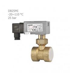 فلوسوئیچ مایعات آی تی (IT) مدل DB25MI