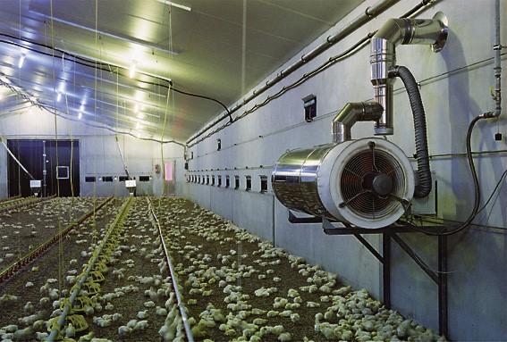 Poultry-jet-heater.jpg